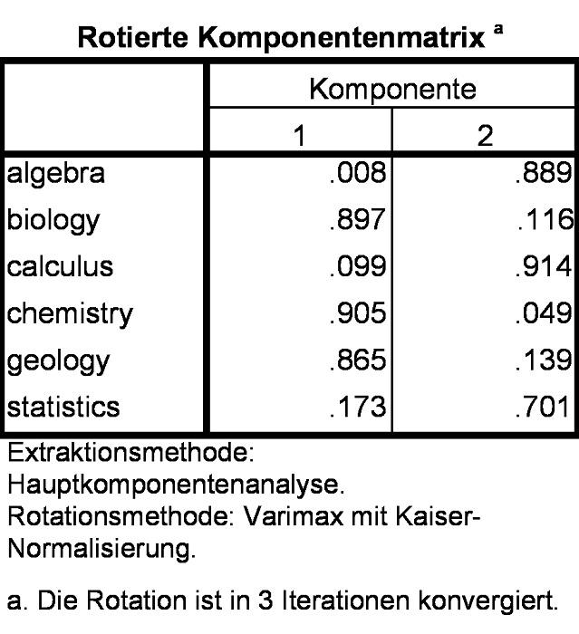 Abbildung 12: Rotierte Faktorladungen