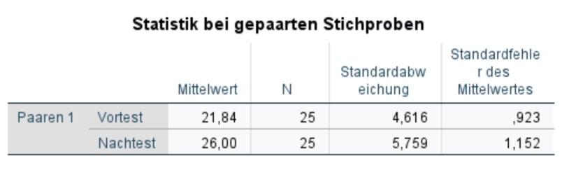 Abbildung 4: SPSS-Output – Stichprobenstatistik
